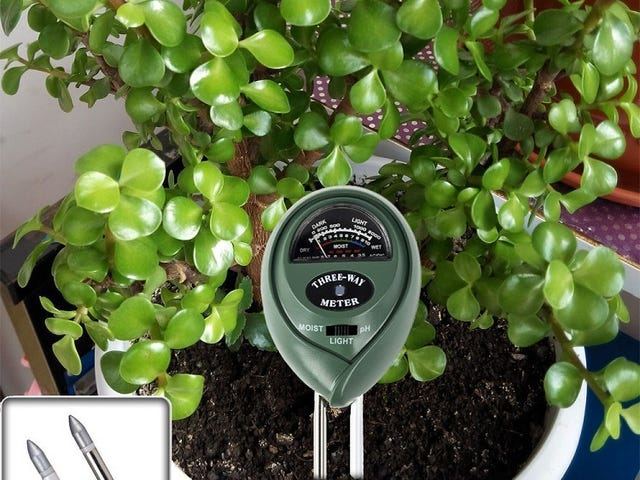 Help Your Plants Grow Healthy and Strong with This Soil Meter