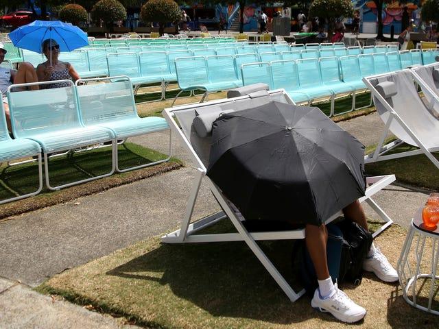 Australia continúa friendo bajo un calor abrasador