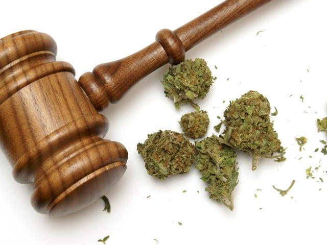 7 Reasons Black America Should Fight Marijuana Prohibition