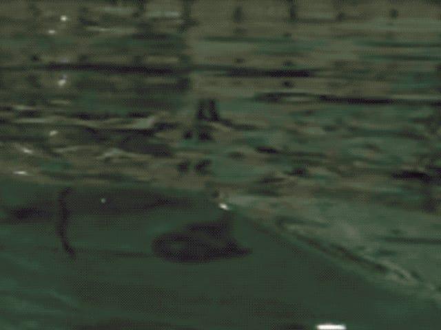 Científicos recrean en laboratorio una monstruosa ola de 25 metros. El resultado es un grabado japonés de 1830