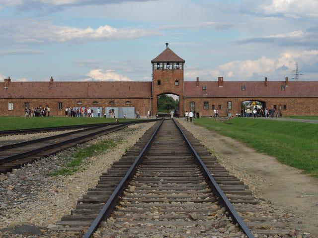 Restored Prisoner's Letter Uncovers Horrific Details of Life at Auschwitz Death Camp<em></em>