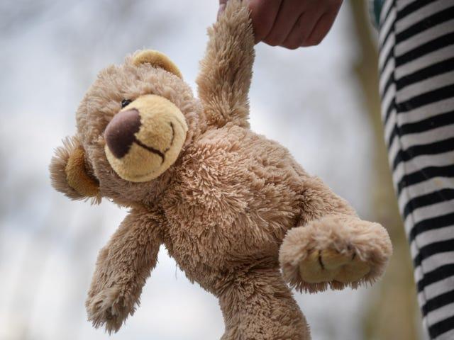 Como um bicho de pelúcia pode ajudar as crianças a sofrer