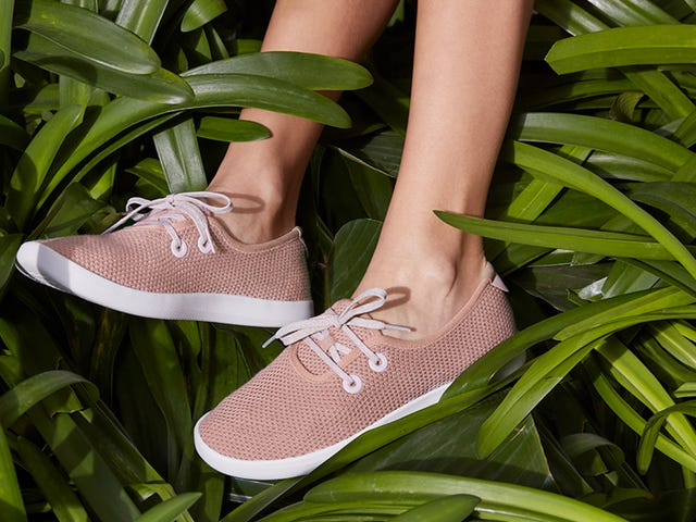 Allbirds Goes Vegetarian With Their Newest Shoes, Made From Trees
