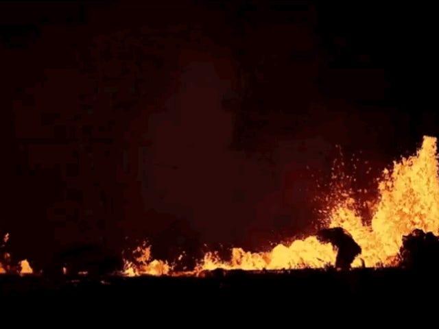 Hvordan skove og ødelagte områder kommer sig efter at være dækket af lava