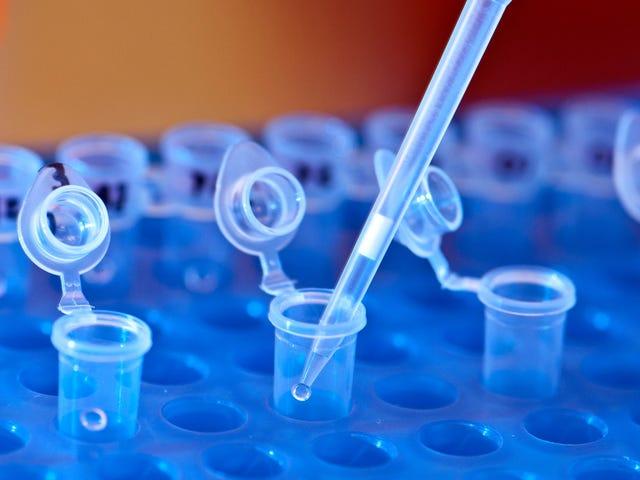 引发CRISPR恐慌的科学家无法重现他们的研究成果
