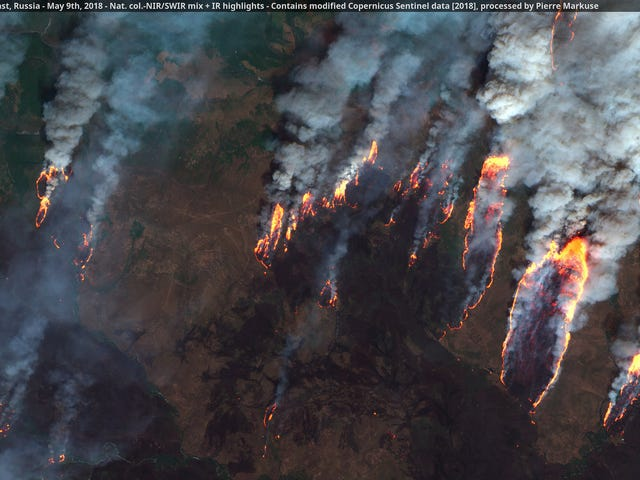 Enormous Wildfires Are Spreading in Siberia