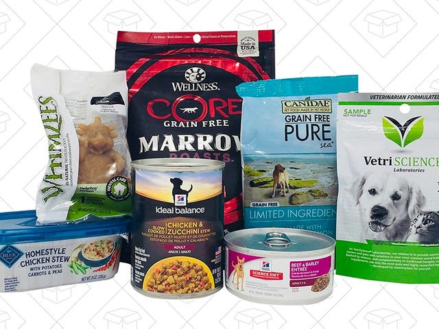 Let Your Dog Try Out Some New Food and Treats With This Amazon Sample Box