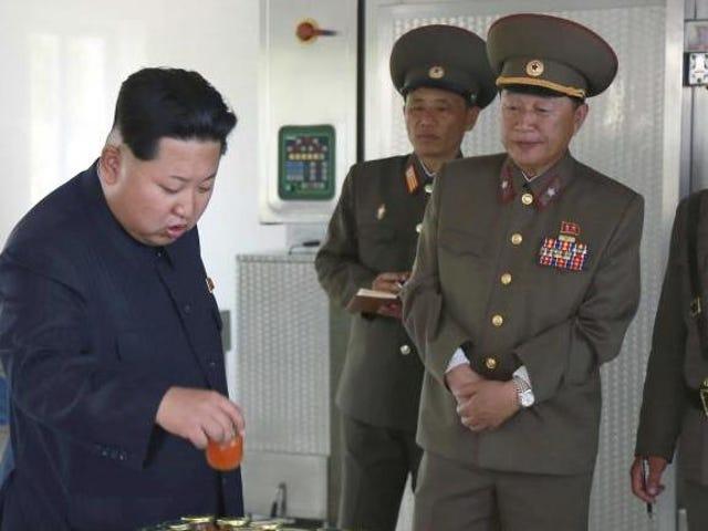 """SHOCKER: Li'l Fat Kim says, """"JK."""""""