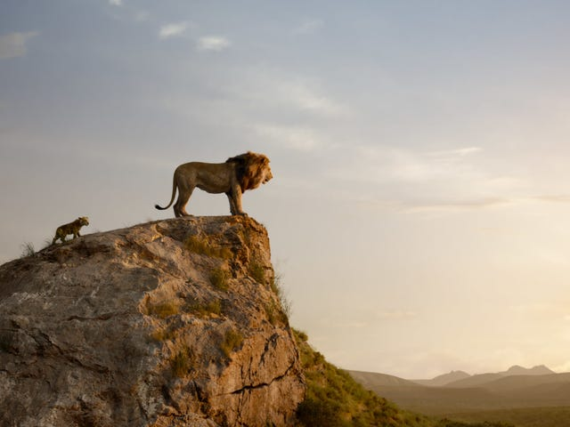 Sorry, The Lion King's 'Circle of Life' Doesn't Exist in the Natural World