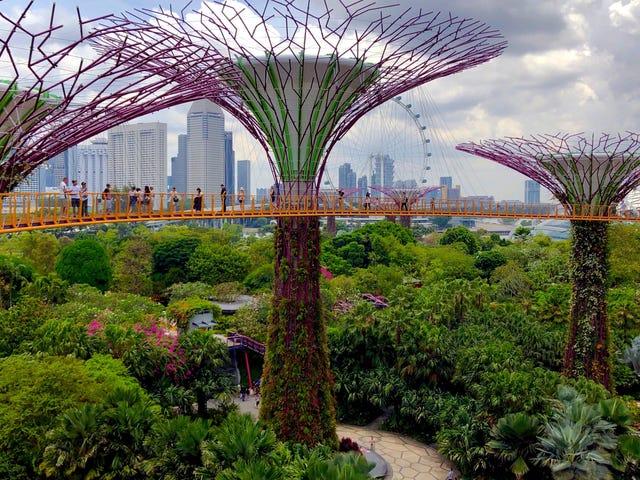 Những lời khuyên du lịch Singapore tốt nhất từ độc giả của chúng tôi