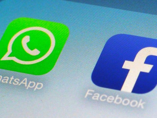 WhatsApp no compartirá por ahora los datos de sus usuarios con Facebook en Europa
