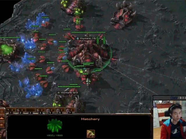Pro Player yrittää pelata StarCraft ja Hearthstone samaan aikaan
