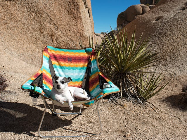 Take a Load Off with Alite's Camping Chairs
