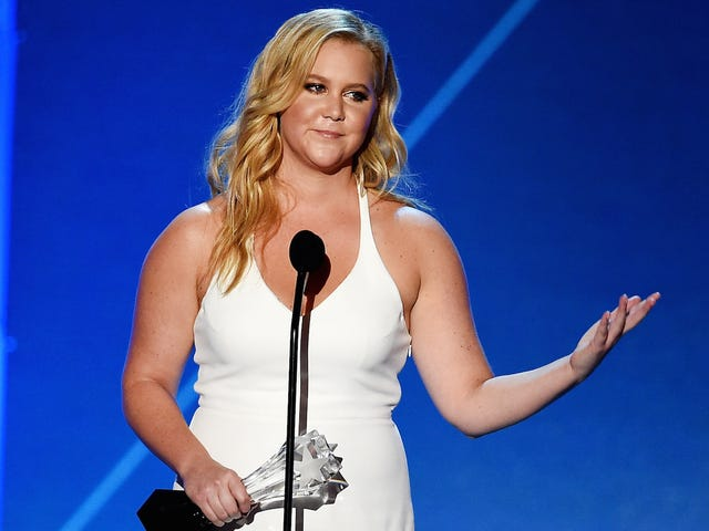 Some of Amy Schumer's Florida Fans Did Not Enjoy Her Anti-Trump Take Last Night