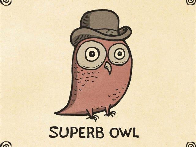 Super Bowl Sunday Evening Open Thread