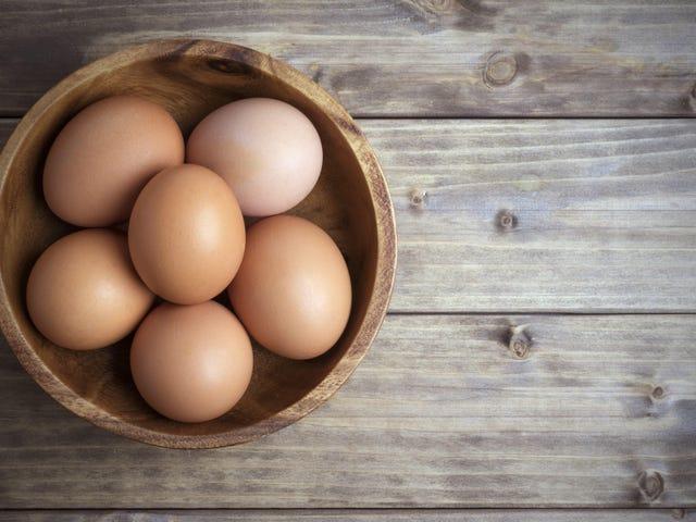 Læg æg i en skål med vand for at se, om de er gået dårligt