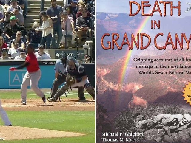 Yankees Broadcasters Share Heartwarming Anecdote About People Who Died At The Grand Canyon
