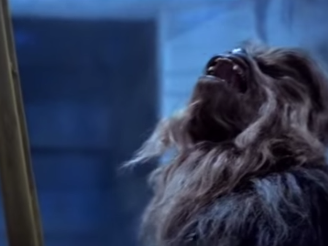 Man, fuck these Chewbacca shoes