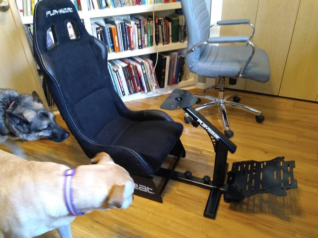 Playseat Evolution: Oppo tested, doggo approved.