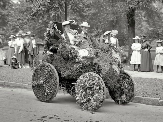 Donk'n Hard 1901