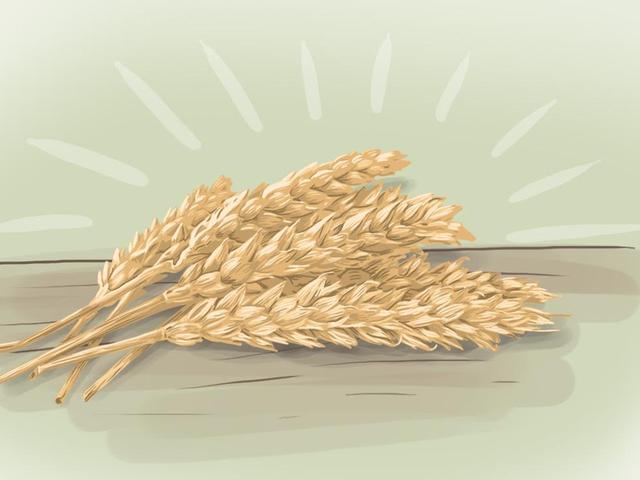 Ngũ cốc cổ xưa Giống như Quinoa có xu hướng hơn lúa mì, nhưng không lành mạnh hơn