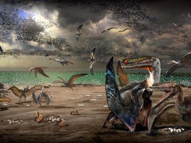 La aparición de 200 huevos de pterosaurio con embriones perfectamente preservados ha revelado muchos de sus secretos