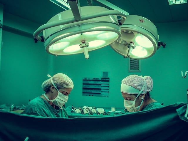 Ознайомтесь з цитрусою, яка має бути апендицитом, і не маєте права