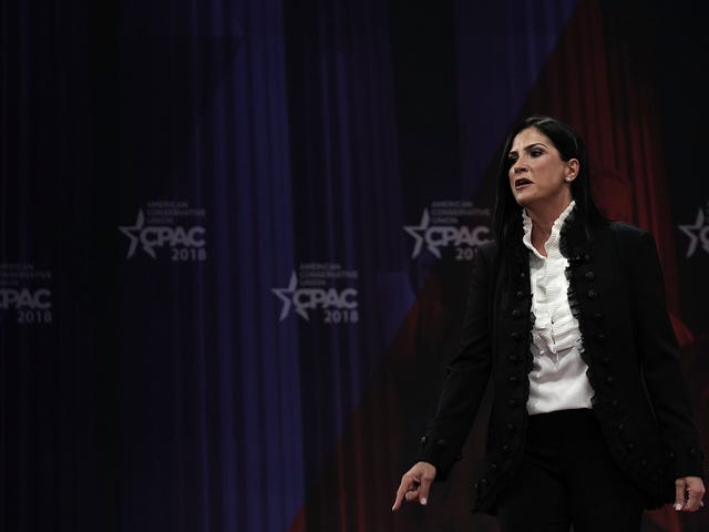 NRA Spokeswoman Dana LoeschContinues Her Crusade to Become the Worst Woman in the World