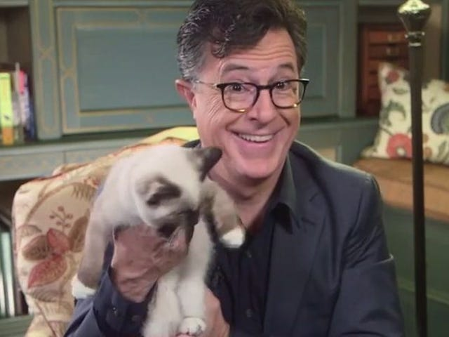 """<a href=https://news.avclub.com/stephen-colbert-spends-his-day-off-with-kittens-and-tru-1798252893&xid=25657,15700022,15700186,15700191,15700256,15700259,15700261 data-id="""""""" onclick=""""window.ga('send', 'event', 'Permalink page click', 'Permalink page click - post header', 'standard');"""">Stephen Colbert passe sa journée avec des chatons et des blagues Trump</a>"""
