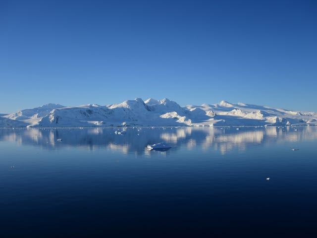 Uh Oh, l'Antarctique vient de battre un nouveau record de chaleur