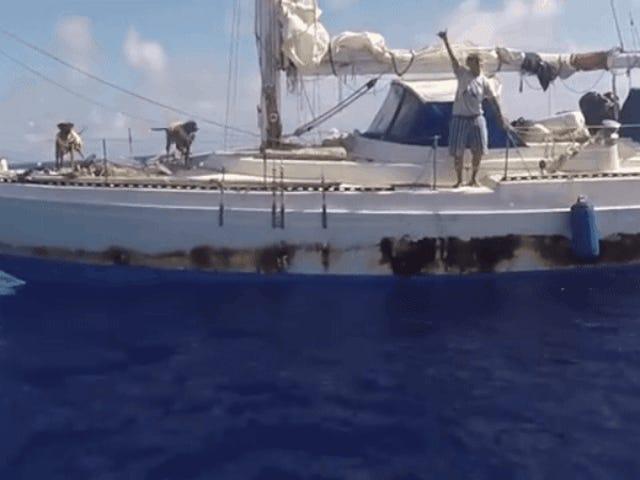 La Conmovedora historia de las mujeres que sobrevivieron och aguas infestadas de tiburones podría ser falsa