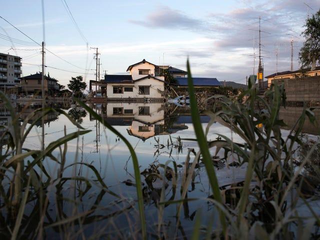 Japan Is Reeling From Deadliest Flood Disaster in Decades