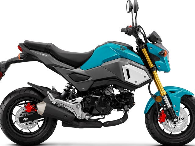 What Do You Want To Know About The 2020 Honda Grom?