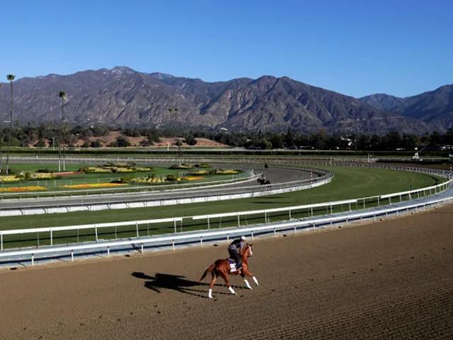 En anden død hest ved Santa Anita
