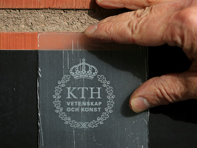 Прозрачная древесина может заменить стекло, стать самым крутым строительным материалом