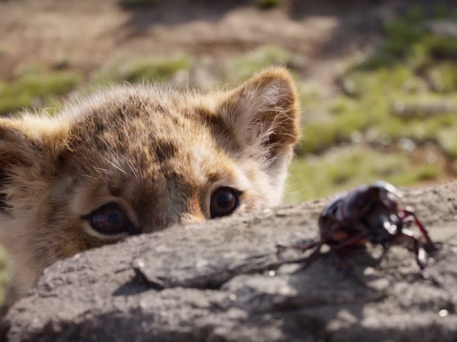 I'm Now Suddenly on Board With The Lion King Remake