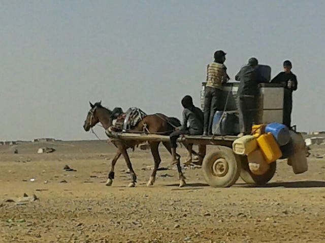 Syrian Refugees Stranded At Jordanian Border With No Food, Little Water