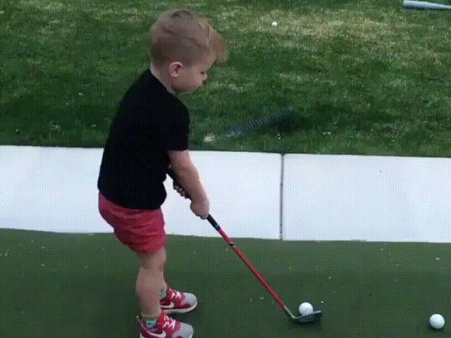 Mỗi mùa hè tôi nghĩ về cách tôi nên học chơi gôn.