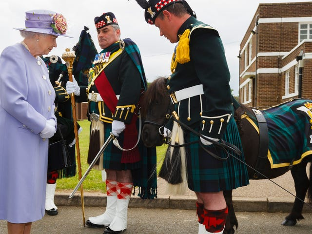 Today, a Small Pony Took a Dump in Front of Queen Elizabeth