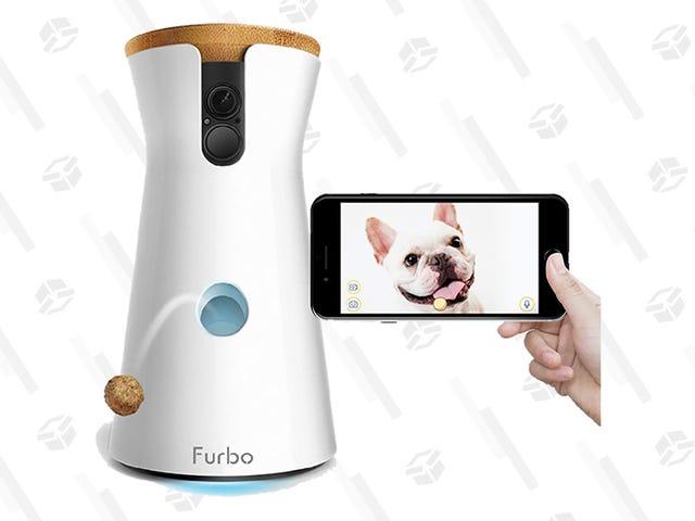 Vigila a tu mascota con la cámara Furbo por solo $135