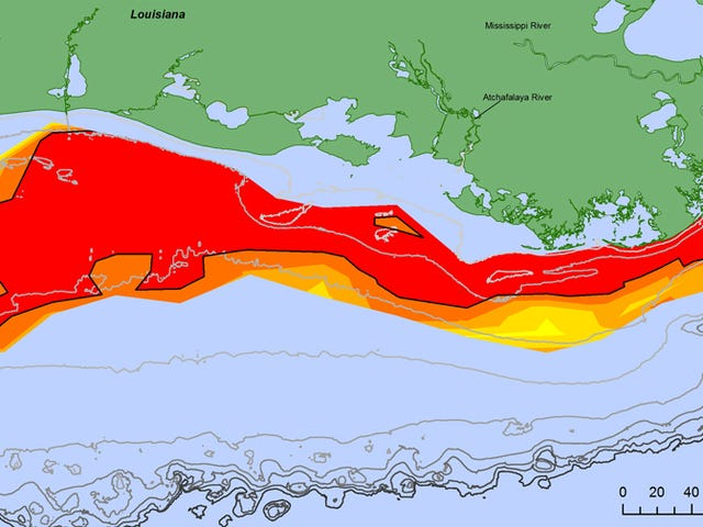 The Largest 'Dead Zone' Ever Has Been Recorded off the Coast of Louisiana