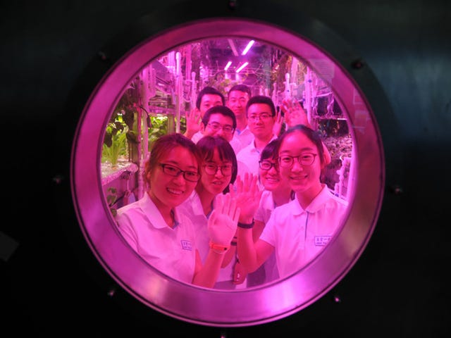 China Sealed Four Students in a Moon Lab to See If We'll Lose Our Shit in Space