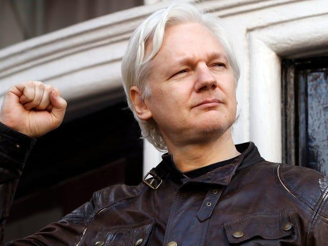 Den amerikanska regeringen har samlat terabytes av Internal WikiLeaks Data
