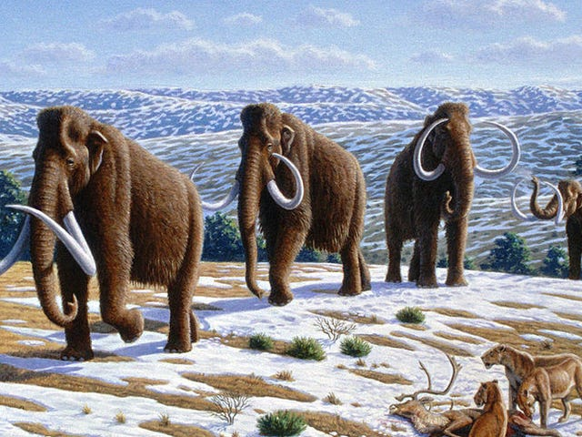 Fox Is Making a Movie About the De-Extinction of the Woolly Mammoth