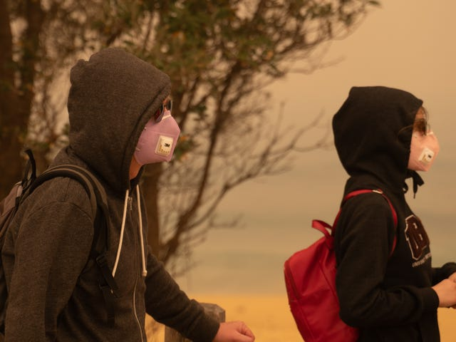 Cloth Masks Don't Protect Against Wildfire Smoke