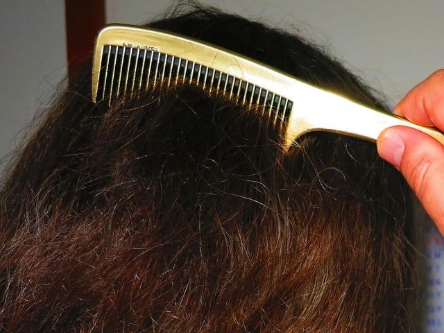 Physicists Hunt for Secret to Detangling Hair