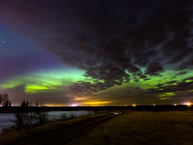 Citizen Scientists Are Helping Map the Aurora Like Never Before