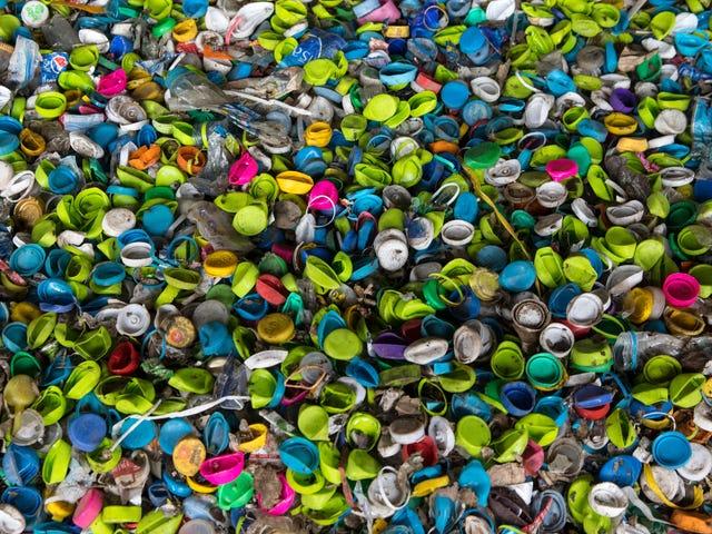 Stop Daur Ulang Botol Plastik Tanpa Tutup