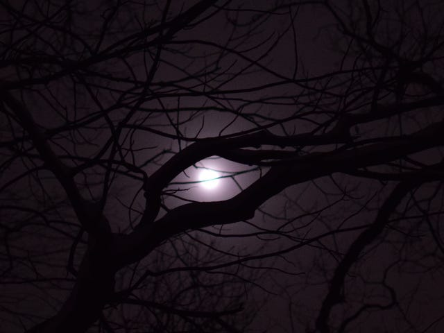♫When The Moon...