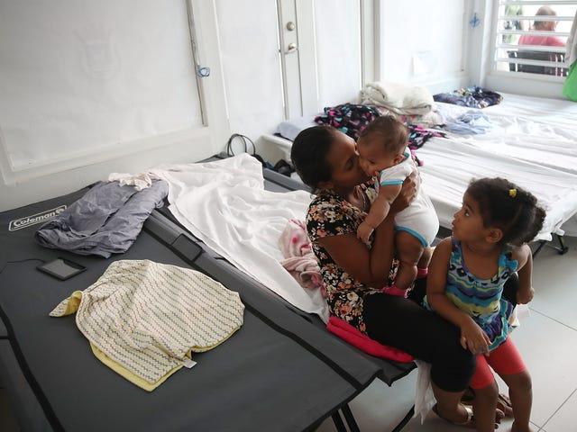 Hoe te om Puerto Rico te helpen Herstel van Orkaan Maria - en krijg de Amerikaanse regering om hetzelfde te doen <em></em>